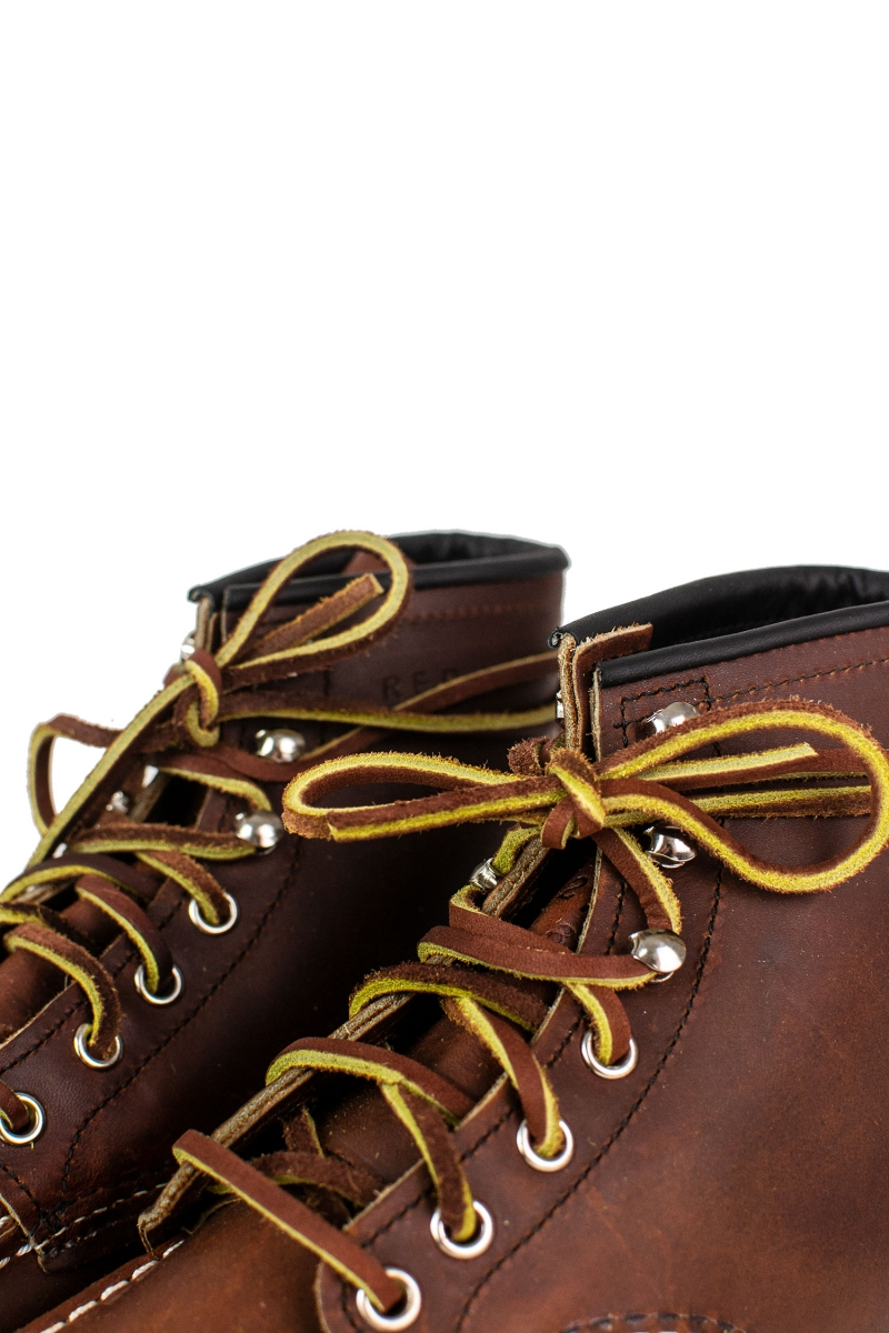 MOC TOE SPECIAL EDITION | 87519 ORO HARNESS