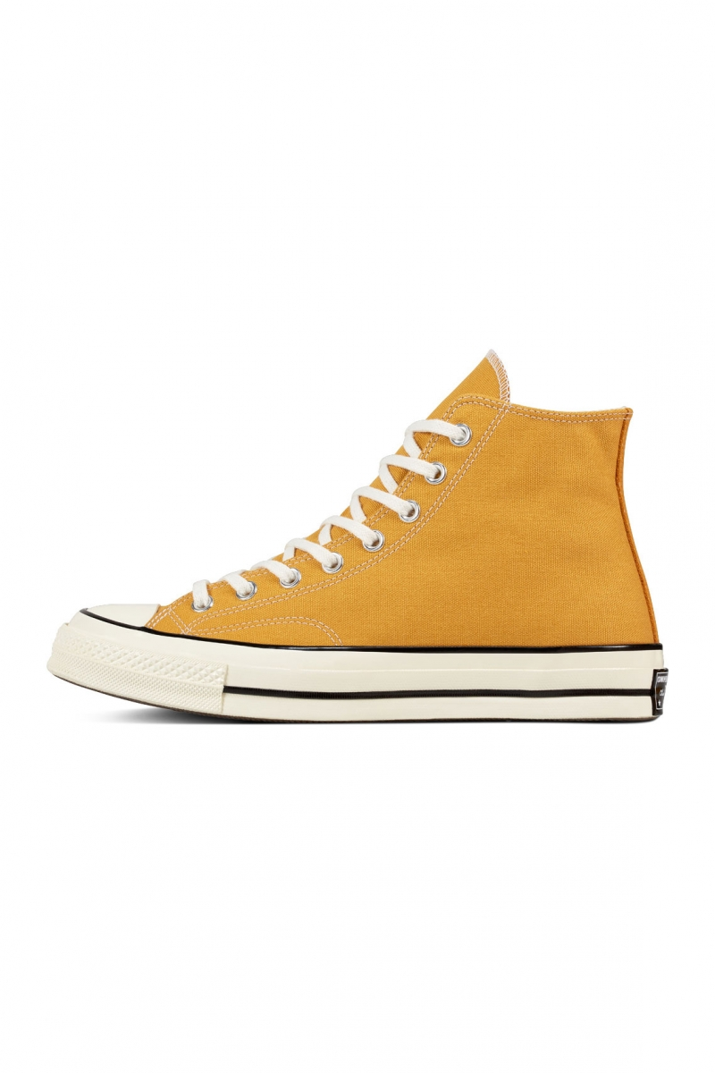 CTAS 70 HI | SUNFLOWER